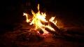 Fire. Campfire.