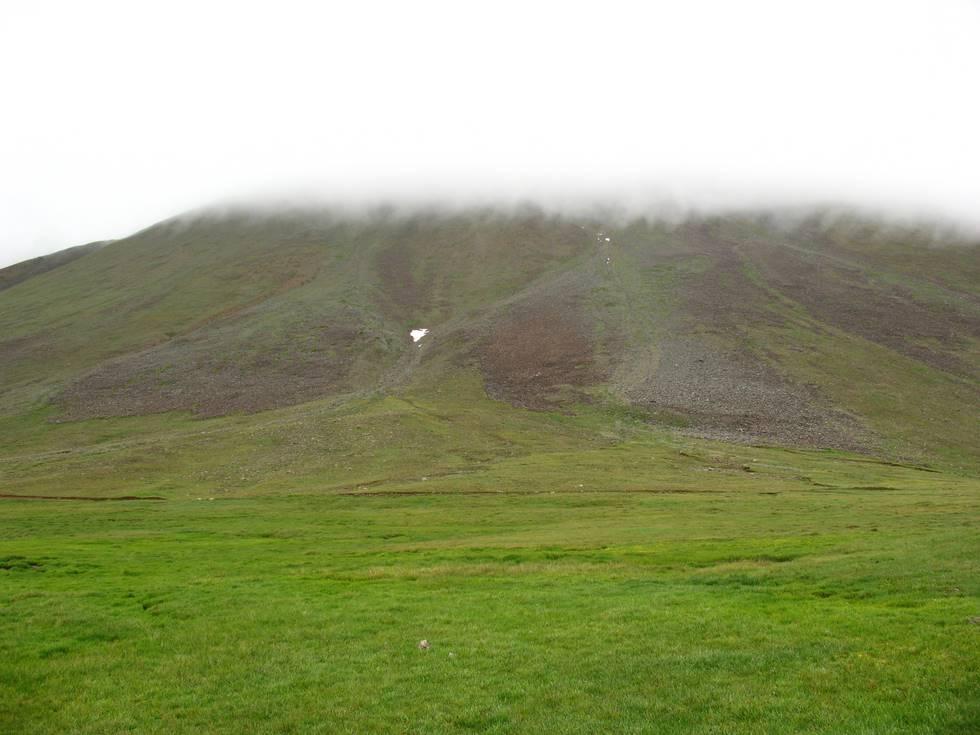 The amazingly green Deosai plain