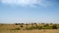 Sorh Valley, Baluchistan