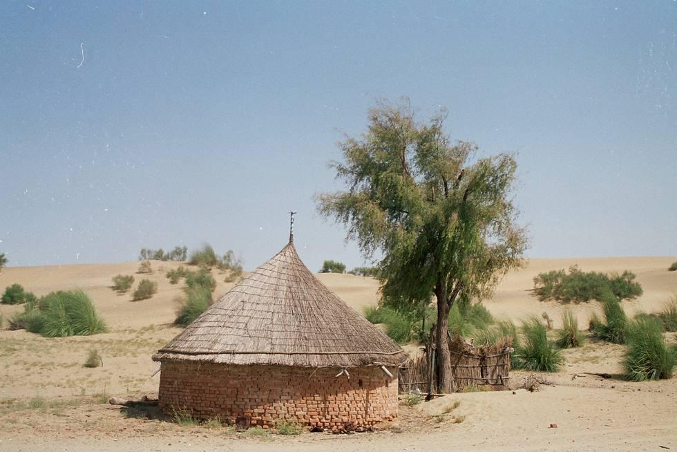 Local Dwelling