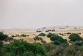 Thar Desert 5